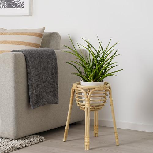 BUSKBO pedestal para plantas