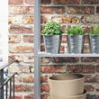 SOCKER plant pot