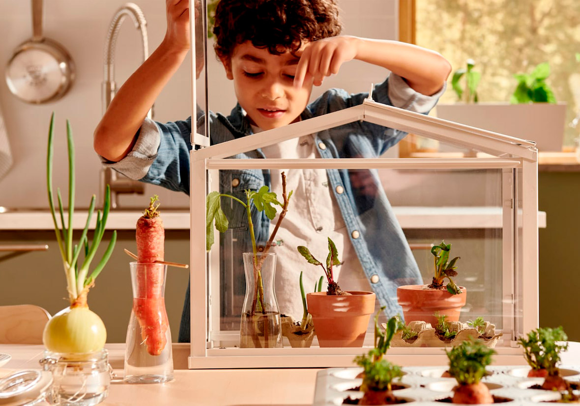 A home garden with kids